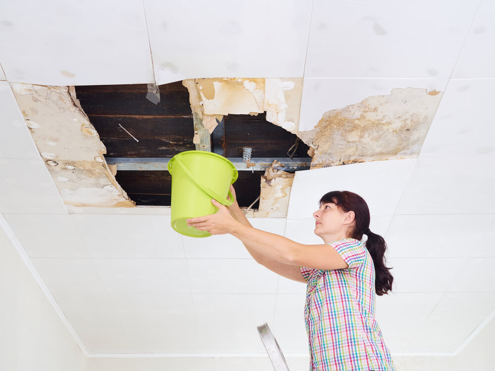 What is the Typical Cost for Water Damage Restoration?